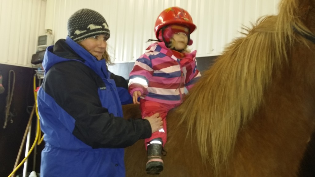 hestbak